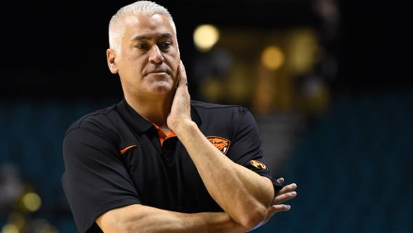 So far Wayne Tinkle is doing everything right on and off the court in Corvallis. (Getty)